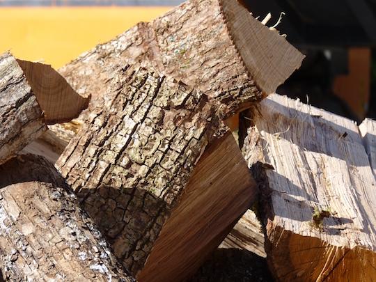 Le bois, première énergie renouvelable de France, l'État semble enfin en avoir pris la mesure