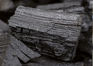Rapprochement entre deux leaders du charbon de bois français : Bordet et Rousseau